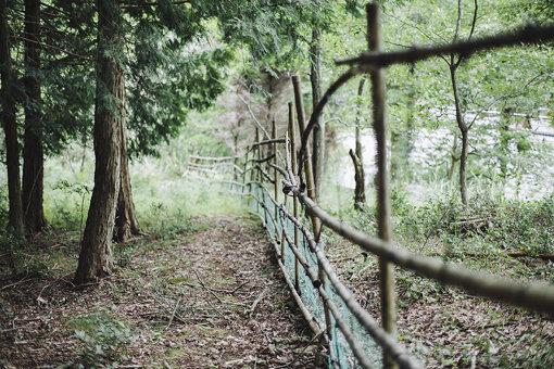 高木宅の、竹で作られた柵
