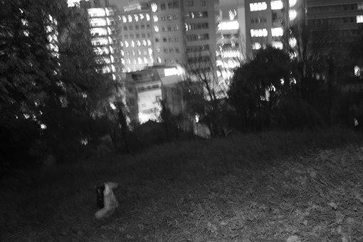 マヒトゥ・ザ・ピーポー<br>GEZAN<br>2009年、大阪にて結成。自主レーベル「十三月」を主宰する。2018年に『Silence Will Speak』をリリースし、2019年6月には、同作のレコーディングのために訪れたアメリカでのツアーを追ったドキュメンタリー映画『Tribe Called Discord:Documentary of GEZAN』が公開された。2019年10月に開催予定だった主宰フェス『全感覚祭』東京編は台風直撃の影響で中止となったが、中止発表から3日というスピードで渋谷での開催に振り替えられた。そして、1月29日に『狂(KLUE)』をリリースする。