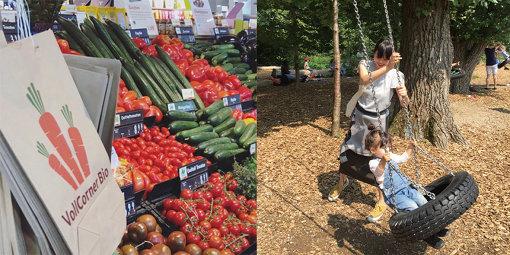 ドイツの野菜売り場と、自然のなかで遊ぶ様子 (写真提供:青柳さん)