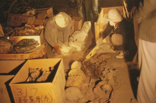 マルカタ南魚の丘遺跡で出土した大量の彩画片の分析と解読を進めるために、クルナ村に点在する貴族墓の調査が1980年にスタート。吉村の調査隊は1982年に約200体のミイラを発掘。一部を日本に運び込み、当時の最新技術であるCTスキャンによって検査、復元作業を行なった(写真提供:吉村作治)