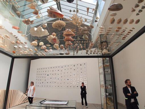 『第55回ヴェネチア・ビエンナーレ国際美術展』(2013年)でのチェコパビリオン。ペトラ・フェリアンコバ&ズビネック・バラドランによる展示 / 撮影:大西若人