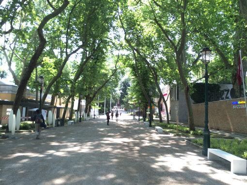 メイン会場となるヴェネチア市街最大の公園カステッロ公園。『ヴェネチア・ビエンナーレ』に参加する各国は公園ともう一つの主会場であるアルセナーレを中心として、その周囲にパビリオンを構えて展示を行う / 提供:国際交流基金