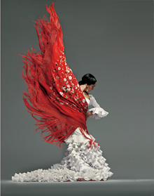 『flamenco festival in Tokyo』フライヤービジュアル写真 ©Flamenco Festival