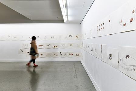 『第9回 shiseido art egg 川内理香子展』展示風景 撮影:豊島望