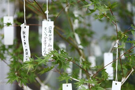 オノ・ヨーコ『念願の木』『回向―つながる縁起』展示風景