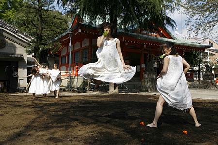 『ましろ』(2008年赤城神社)©N.Ikegami