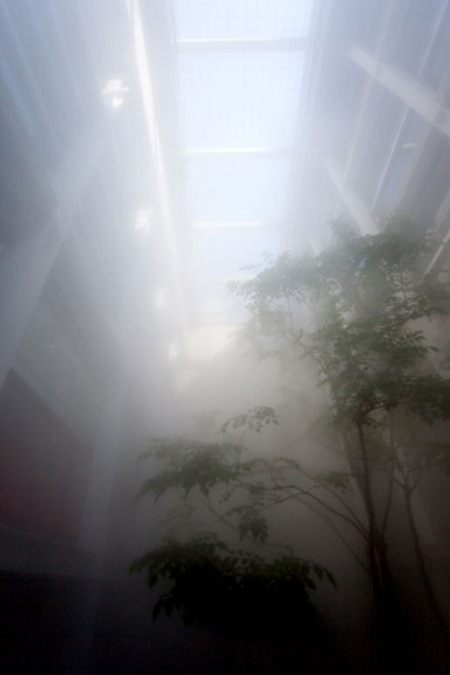 「CLOUD FOREST」滞在制作の様子[中央公園](2010)