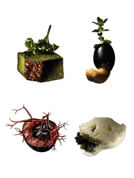 諏訪綾子「感覚で味わう感情のテイスト」作品