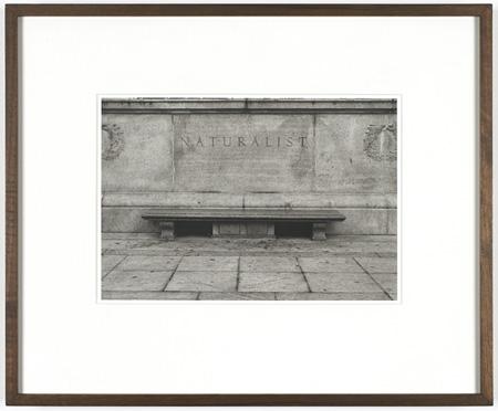 フェリックス・ゴンザレス=トレス《「無題」 (自然史)》1990年、 13点組の一部、東京都写真美術館蔵、 ©The Felix Gonzalez-Torres Foundation, Courtesy of Andrea Rosen Gallery, New York