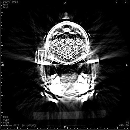 "©SHIMURABROS.""X-ray train""2008(Courtesy of Taka Ishii Gallery)"