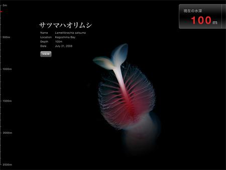 『深海のとっても変わった生きもの』画面例