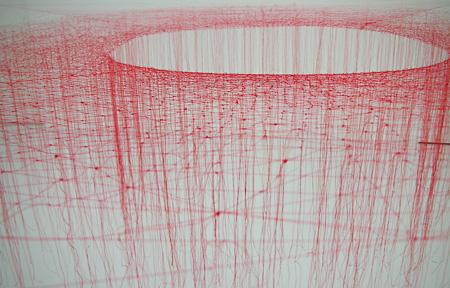 池内晶子「Knotted Thread-Red」2009 絹糸(撮影:橋本舞)[参考図版]
