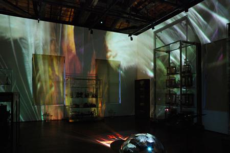 博物館と植物園に広がる実験的映像投影、大小のスクリーンに広がる映像博物学の世界