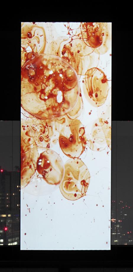 小谷元彦「No. 44」2010