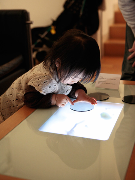 FairyFinder 03《コロボックルのテーブル》/2006 写真:米倉裕貴