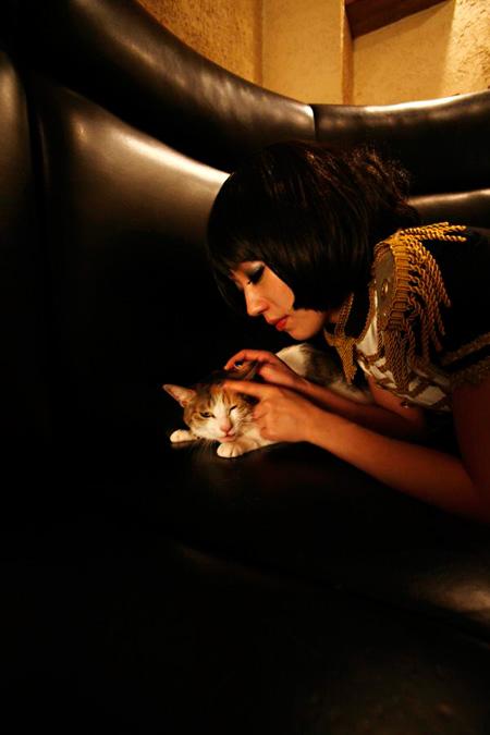 『ミュージシャンと猫』