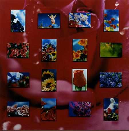 蜷川実花《Everlasting Flowers》2005 Photo: Yoshitaka Uchida