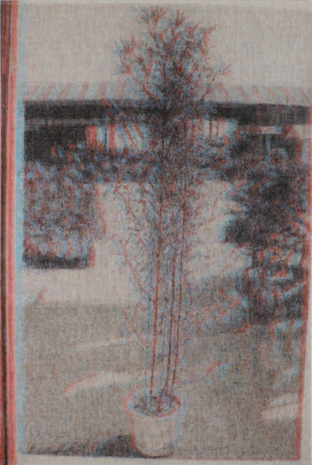 石井友人『Subimage (plant)』2011, oil on canvas, 194 x 130.5cm copyright the artist, courtesy ShugoArts