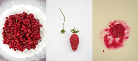 福田里香による「日にち薬」を作るワークショップのイメージビジュアル