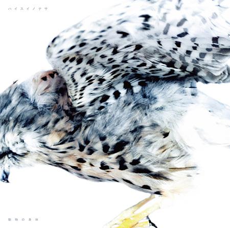 ハイスイノナサ『動物の身体』ジャケット