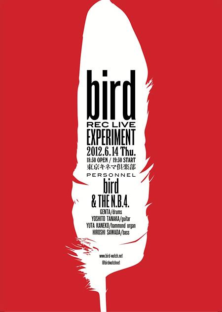 bird『bird - REC LIVE EXPERIMENT -』フライヤー