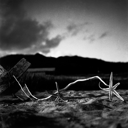 『ヒトデのある風景』1936年 ©Shoji Ueda office 2012