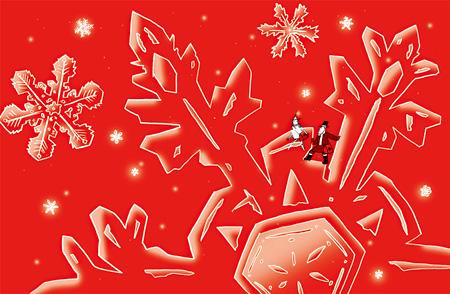 《スノー・クリスタル》 2009年/インクジェットプリント ©Tamura Shigeru  Studio