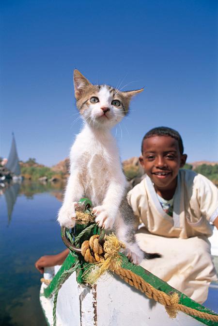 エジプト・アスワン ©MITSUAKI IWAGO