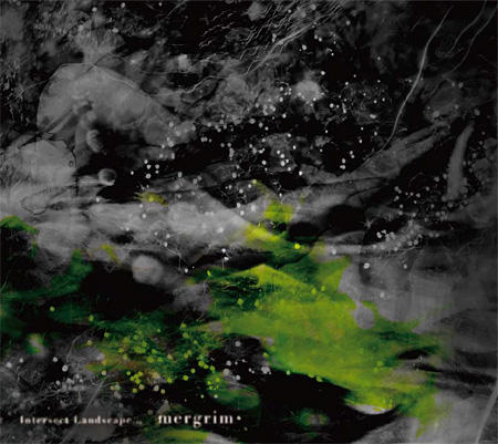 mergrim『Intersect Landscape...』ジャケット