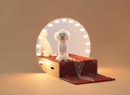 『Paramount』 デザイン:コンスタンチン・グルチッチ、犬種:トイカッププードル photo by Hiroshi Yoda