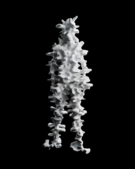 Trans-Yujin(Spine) 2012 mixed media photo by Nobutada OMOTE | SANDWICH
