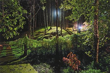 フランク・カリャガン『森の監視』 2008年、インクジェット・プリント、h.41×61cm シンガポール美術館蔵
