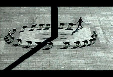 フランシス・アリス『愛国者たちの物語』1997年、メキシコシティ ラファエル・オルテガとのコラボレーション アクションの記録映像 24分40秒 映像スティル