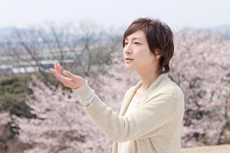 『桜、ふたたびの加奈子』 ©2013「桜、ふたたびの加奈子」製作委員会