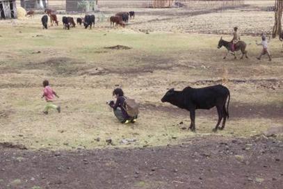 高木正勝 エチオピア訪問の様子