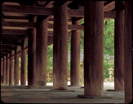 法隆寺西院中門列柱(第1部展示)