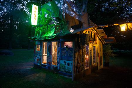 『モンシェリー:自画像としてのスクラップ小屋』2012年(dOCUMENTA(13)での展示風景/細部 写真:山本真人)©Shinro Ohtake