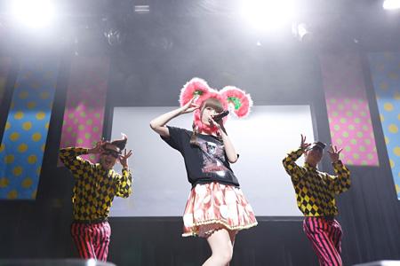 『100%KPP WORLD TOUR 2013』の様子