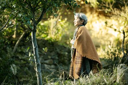 『陽だまりの彼女』 ©2013『陽だまりの彼女』製作委員会