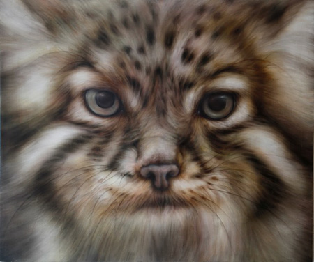 山脇紘資『山猫』 2013,162 x 194cm, oil on canvas
