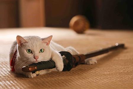 『猫侍』 ©2014「猫侍」製作委員会