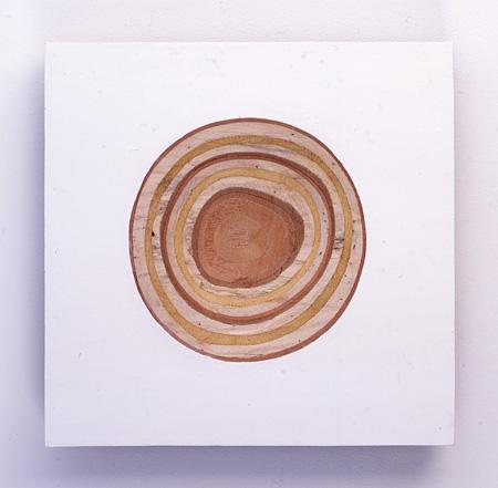 『潜在現』菅木志雄, 2008年 木、アクリル絵の具, 350 x 345 x 65mm 出展:小山登美夫ギャラリー(東京・シンガポール)