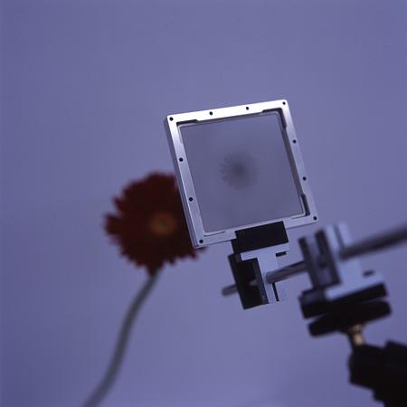 『Camera Lucida』2004年