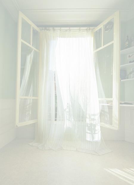 大栗恵『Paysage d'une fenêtre』2009年