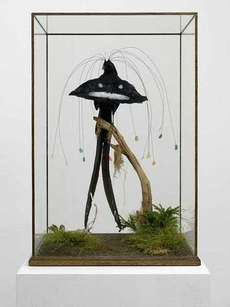 ライアン・ガンダー『四代目エジャートン男爵の16枚の羽毛がついた極楽鳥』2010 © Ryan Gander. Courtesy the Artist