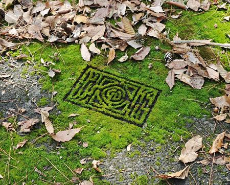 ?田安規子・政子『庭園迷路』 2010年 写真