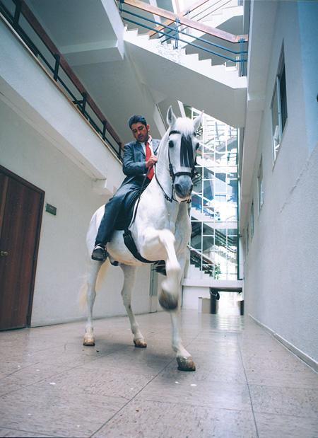 フェルナンド・サンチェス・カスティーリョ『馬に捧げる建築』2002年 MUSAC蔵 ©Fernando Sánchez Castillo, Courtesy: MUSAC