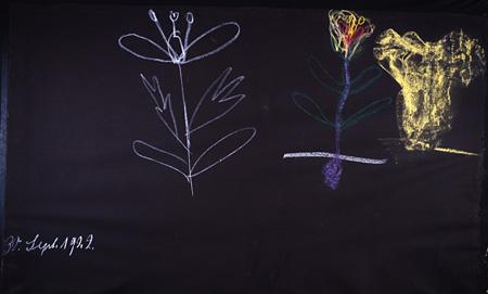 黒板ドローイング 人も植物も状況次第 1922年9月30日