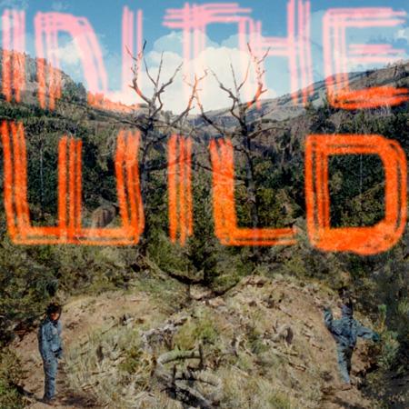 FaltyDL『In The Wild』ジャケット