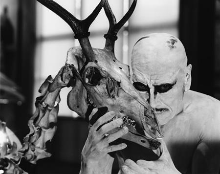 大駱駝艦・天賦典式『ムシノホシ』イメージビジュアル 撮影者:荒木経惟 撮影空間:インターメディアテク(デザイン ©UMUT)